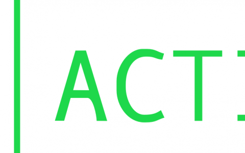 ACTION Project Partner Meeting